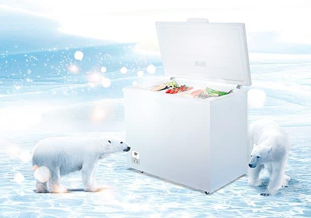 El poder de congelación de los arcones congeladores e muy importante