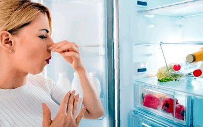 Cómo quitar el mal olor del congelador