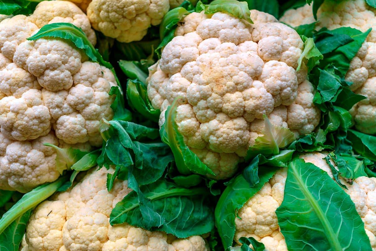 Se puede congelar la coliflor cruda o cocida